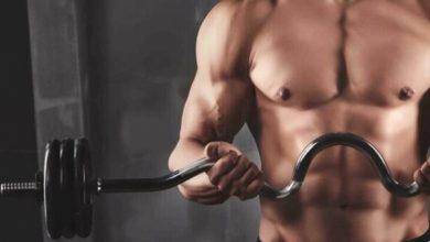 Photo of أهم 10 أطعمة مفيدة لبناء العضلات